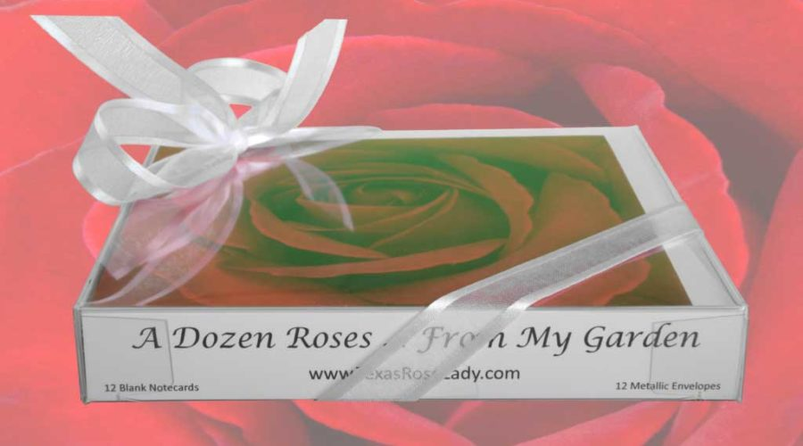 A Dozen Roses From My Garden Note Cards