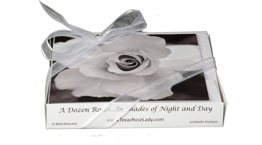 In Shades of Night and Day Note Cards